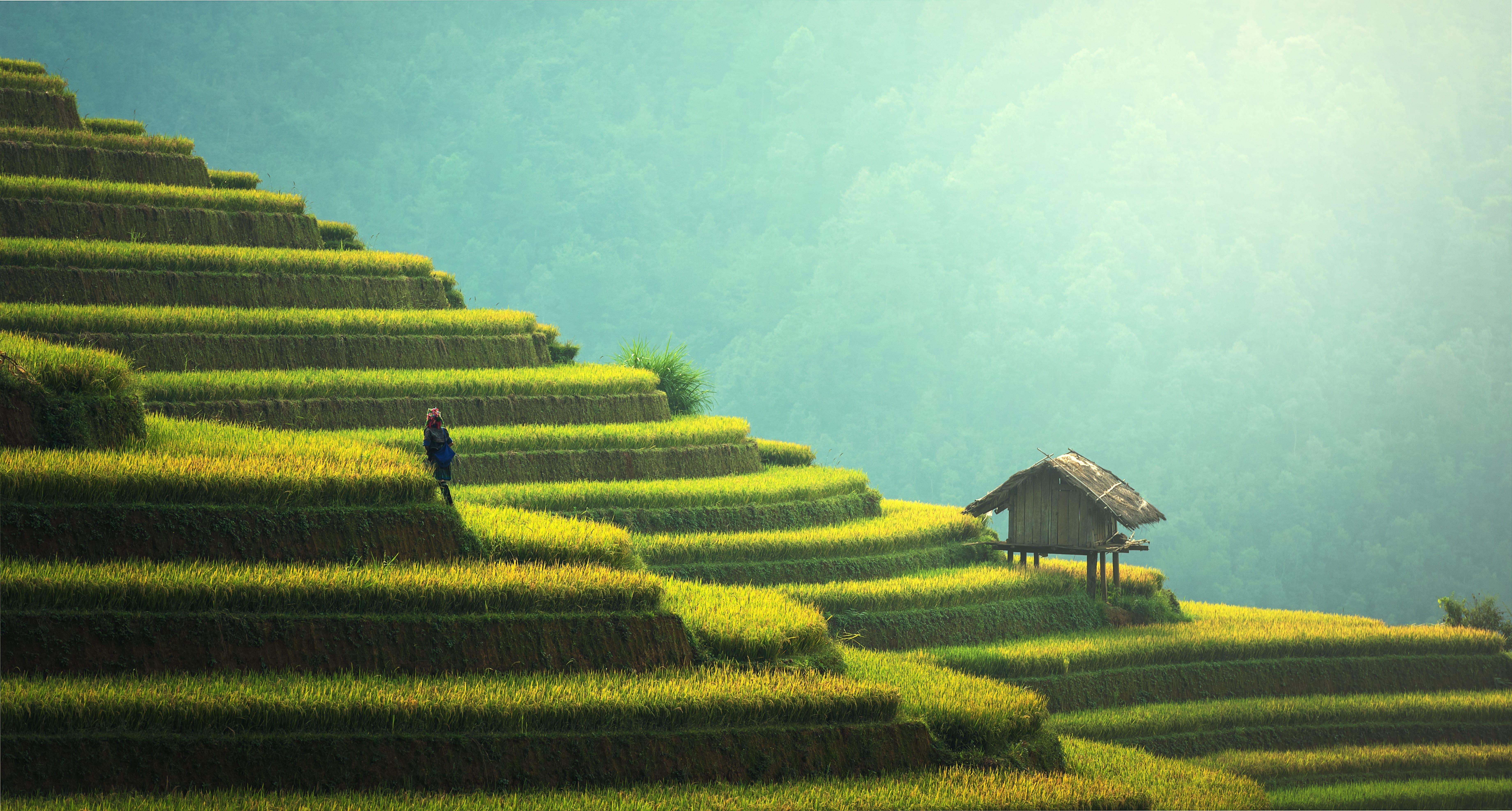 Wanderlust – Akshi Jindal
