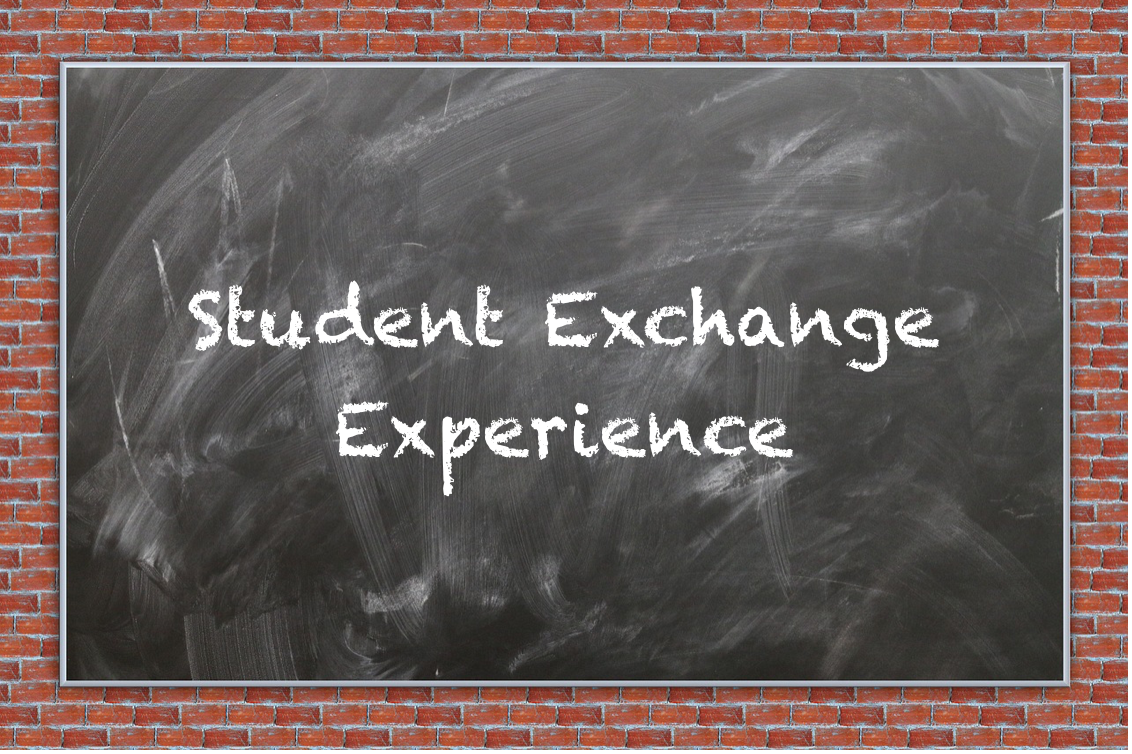 Student Exchange: Teaching Underprivileged Children – Felix Meierhofer